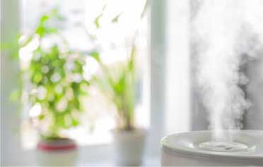 The importance of clean air in your home cannot be overstated.